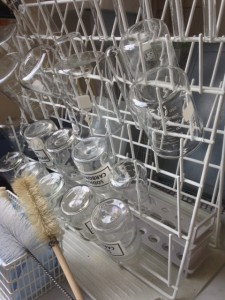 Glassware Cleanin